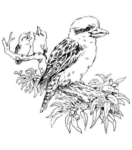 Z78D Kookaburra With Babies - Wood Mounted Stamp